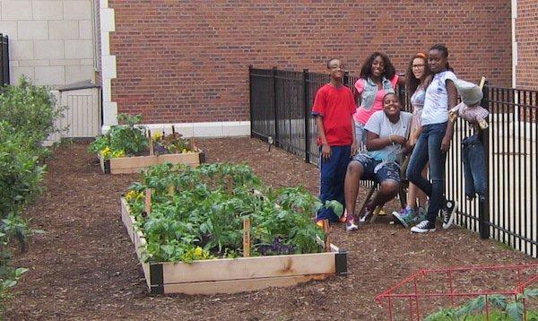 chicago students plant garden