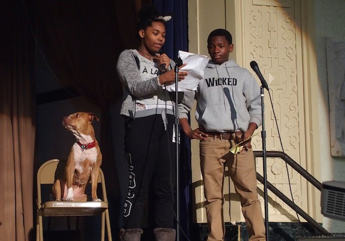 puppy mill awareness week presentation