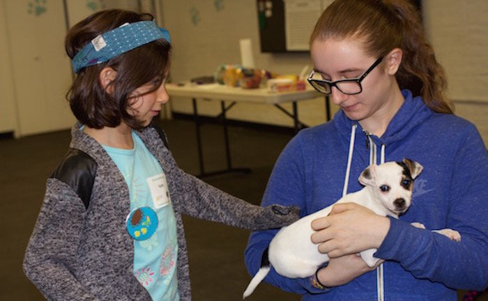 teen animal shelter volunteer