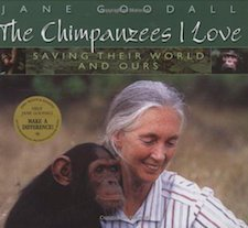 The Chimpanzees I Love- Saving Their World And Ours
