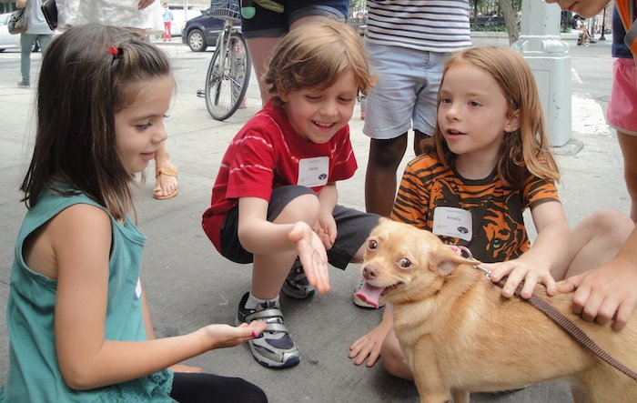 campers with rescue dogs