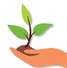 environment hand with plant
