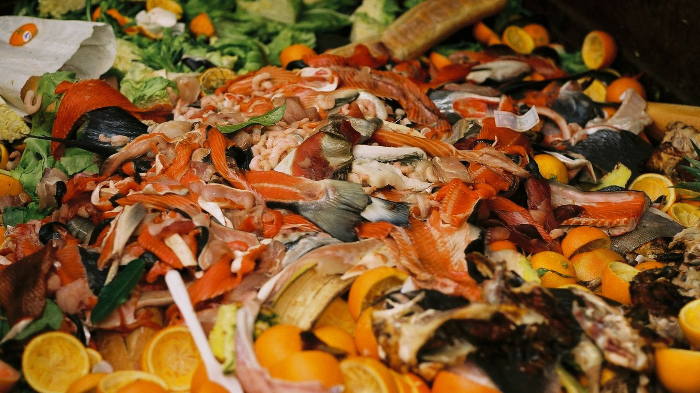 Pile of food scraps (including fish tails, orange peels, and rotten produce)